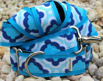 Mod Martingale Dog Collar with Matching Leash