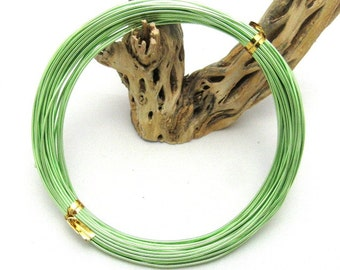 1 Roll 1.0mm Aluminum Wires Light Green 10m/roll (B114)