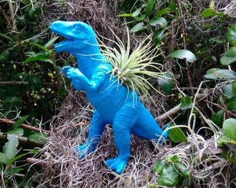 Blue T Rex Air Plant Planter
