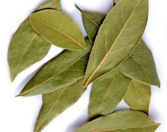Bay Leaves - Organic Greek Laurel Leaves - Laurus Nobilis - Greek Daphne -Greek Herbs -Bay Leaf Tea-Greek Herbs-Cooking herbs-Wicca Herbs