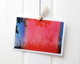Postcard A6 photo meadow analog