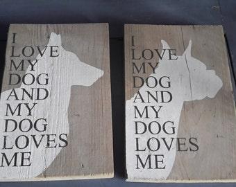 Scaffolding wood with dog