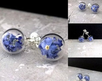 Real not forget me earrings, dried not forget me flowers  in glass, stud earrings,