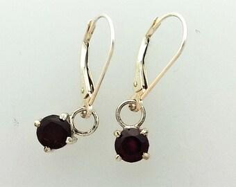 Gorgeous Garnet Drop Earrings