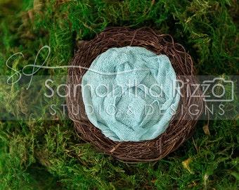 Digital Newborn Photography Background - Spring Palette Nest Pack (Set of 4)