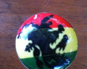 Hand Painted Rasta Ceramic Knob