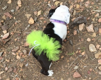 Apple Green Tutu For Dogs/Apple Green Tutu For Bulldogs/Pet Tutu