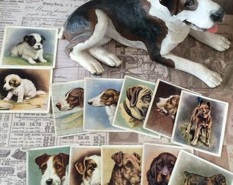 Journaling, Ephemera, Antique Dog Cards, Cigarette Cards