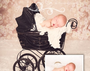 Instant download Prop Beautiful Digital Newborn Photography Prop ( Antique Baby Carriage With Flowers  )