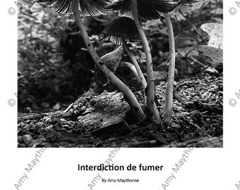 Interdiction de fumer - A4 Print