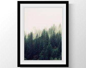 Nature Wall Art, Tree Print, Tree Art, Nature Print, Nature Photography, Nature art, Tree Photography, Forest Print, Forest, Foggy, Tree
