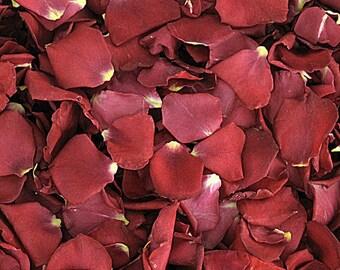 Marsala Rose Petals. 10 cups. Wedding Petals. Flower Petals. Flower Confetti. Proposal Petals. Flower Girl Petals. Confetti. Rose Petals.USA