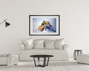 Photographic Metallic Prints: Winston Da Crab
