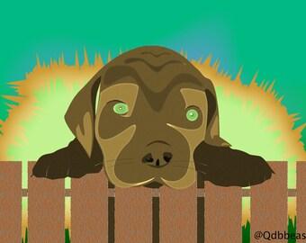 puppy kaboom