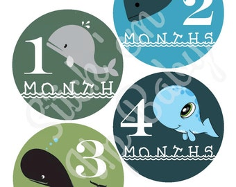 Monthly Baby Stickers - Baby Age Stickers - Baby Boy - Whales - Baby Photo Prop - Baby Milestone Stickers - Baby Shower Gift