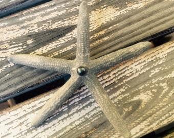 Gray finger starfish hair clip
