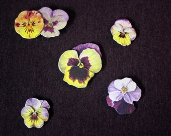 Lavender and Yellow Violet Flower Magnets