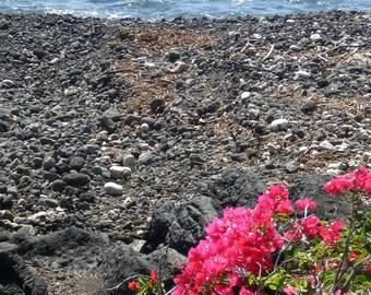 Seashore in Maui