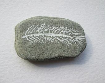 Feather on Stone