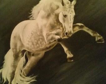Sliver Stallion - 15 inches x 17 inches
