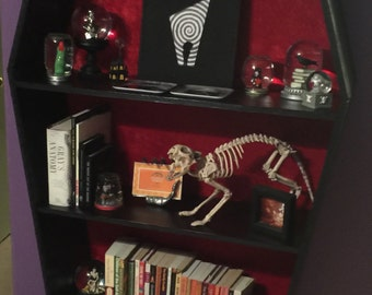Coffin Bookshelf Local Pickup (no shipping cost)
