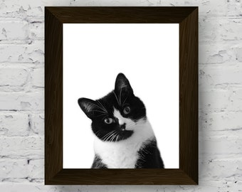 Animal print, cat print, baby room prints, animal wall art, nursery decor, nursery wall art, baby room wall art, animal print nursery