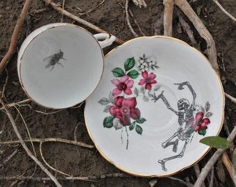 Alberta Wild Rose Skeleton