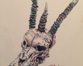 Dragon skull prisma color pencil drawing 11x14 matted and framed