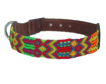 Small Dog Collar S1