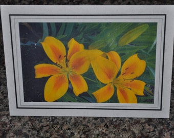 Double Framed Card - Yellow Lilies