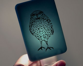Burrowing Owl Nightlight on Ocean Blue Fused Glass Night Light - Gift for Baby Shower or Nature Lover - Illustration Owl