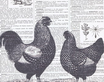 Rooster.Kitchen Decor.Farm animal.All Occasion Gift Idea.authentic antique Book  Page Print.Altered Paper Ephemera.Cocks.country