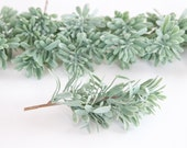 Set of 7 Artificial Succulent Bush Stems in Sage, Frosted Green -Fake succulents -Faux Succulents - artificial succulents- sage - ITEM 0244