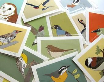 Wild Bird Print--choose your bird--choose your size!