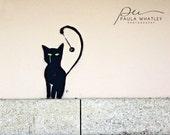 Graffiti art, Paris street graffiti, cat graffiti, Paris graffiti, Paris Photo, Paris Art, Paris Decor, Paris print, Paris wall art