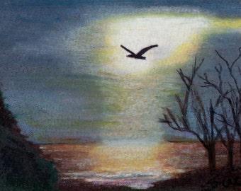 original art drawing aceo card landscape light seagull lake