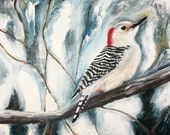 SUMMER SALE - Winter Woodpecker - Red Bellied Woodpecker - Original Oil Painting - Bird Art - 8x10 inch