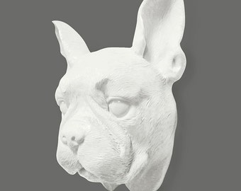 SPECIAL EDITION: Boston Terrier Wall Hanger