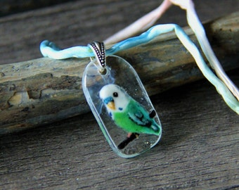 Beautiful Budgie necklace  - fused glass pendant