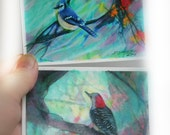Aceo Originals, Spring Jay and A perfect view #Artist trading cards, Tiny art, #miniature art #Gifts under 20 #Gina signore #natureart