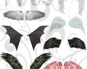 Wings collage sheet  and Individual PNG Images
