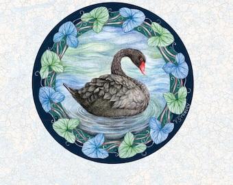 Black Swan Greeting Card by Valerie Greeley