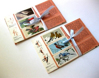 Vintage Small Bird Cards on Original Pages, 18 Bird Cards