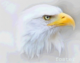 Eagle art, eagle painting, bald eagle, eagle, bird art, wildlife, nature