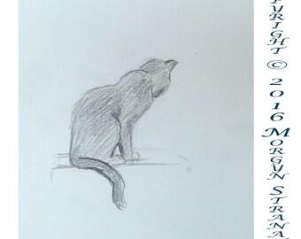 2016 Cat Series #1 (original OOAK drawing)