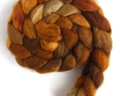 BFL Wool Roving - Hand Painted Spinning or Felting Fiber, Brown Surround