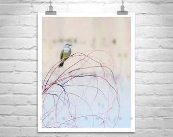 Minimalist Art, Bird Print, Fine Art Photography, Pastel, Nature Photograph, Spring, For Home, Wall Picture, 8x10, 11x14, 16x20, 20x24