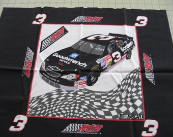 Nascar #3 Dale Earnhardt Sr. Pillow Panel RCR Racing