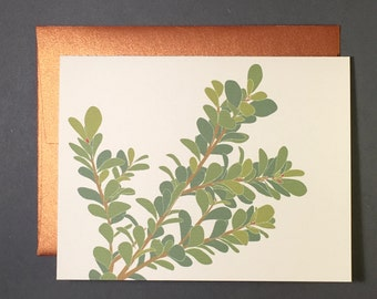 Boxwood Card Set