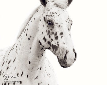Black and White Horse Photography, Fine Art Horse Photography, Horse Print, Spots Print, Horse Picture, Horse Poster, Appaloosa Horse,